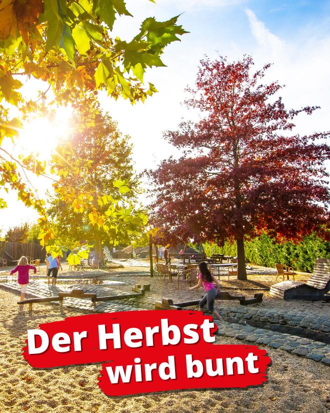 Werbung Herbst Tolli Park